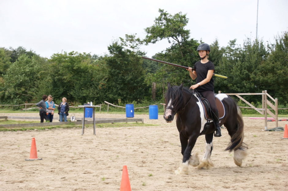 Working Equitation clinic 2019