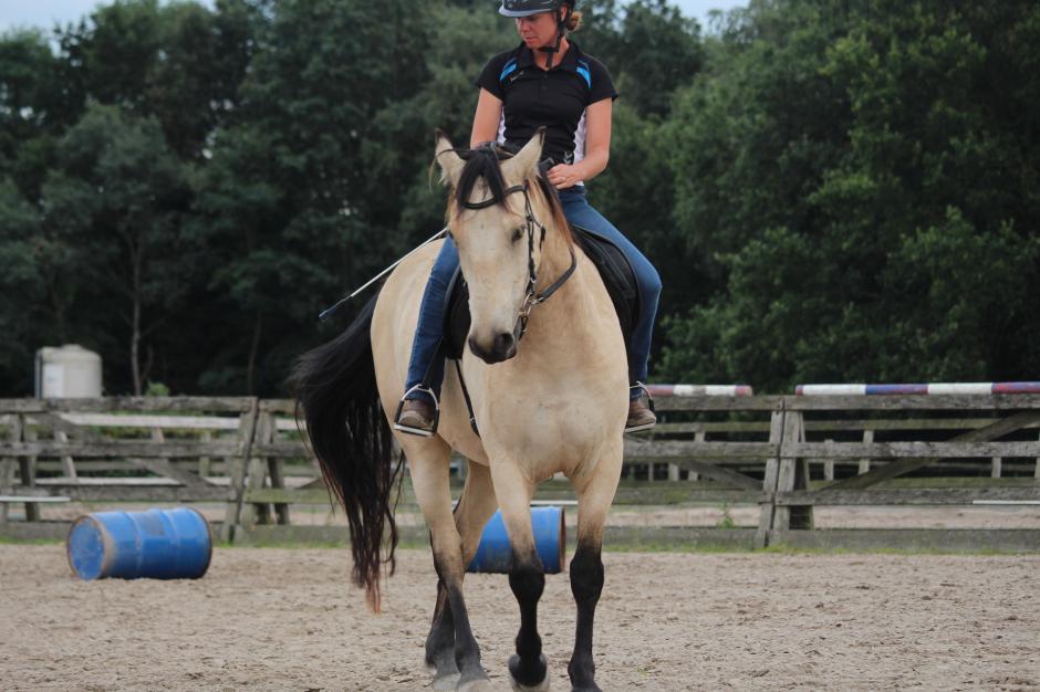 Zoe & Kheelen - get good with horses